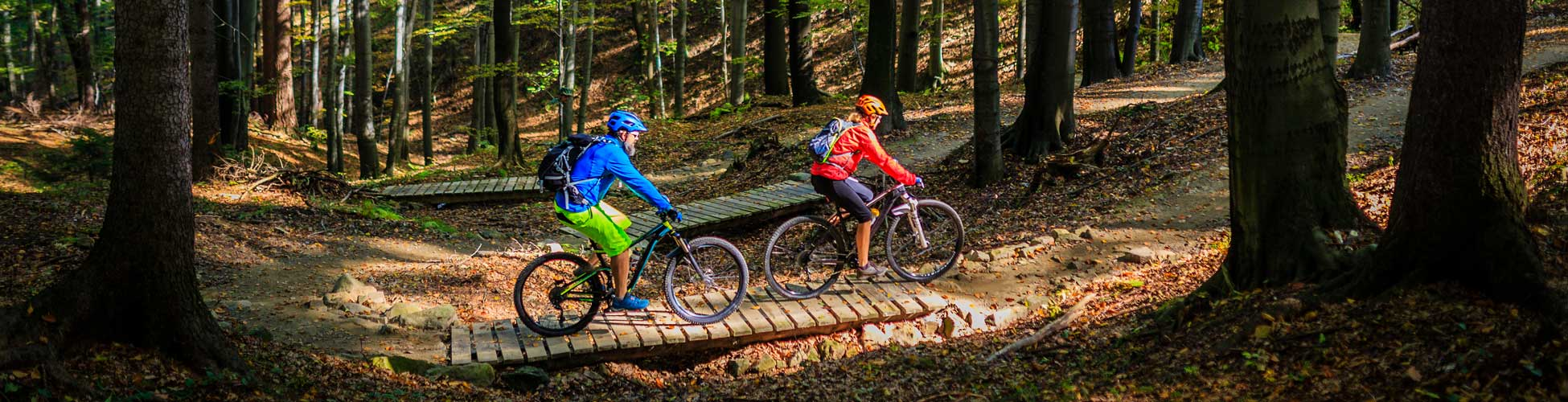Breadcrumb image noleggio bici mountain bike